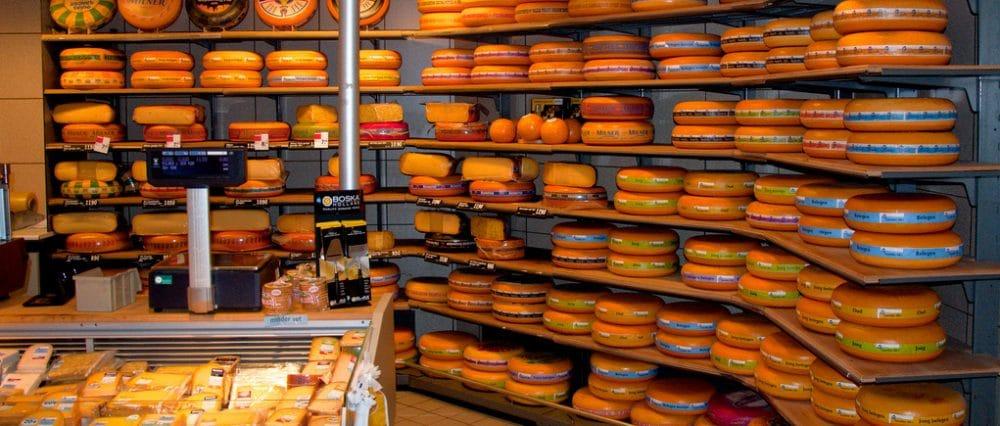 Hoe kun je zelf kaas maken?